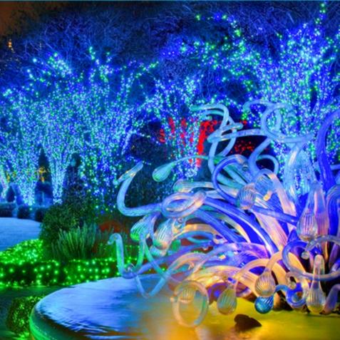 photo courtesy of atlanta botanical garden - Atlanta Botanical Garden Lights