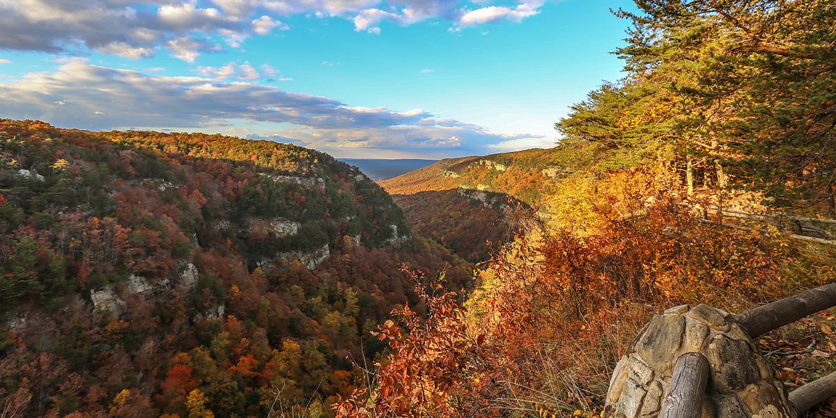 cloudland canyon fall hikes