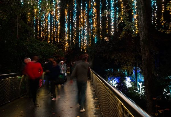 More than 1,000 strings of lights hang over the Storza Woods bridge at the Atlanta Botanical Garden. Photo by Virginie Kippelen.