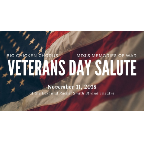 Veterans Day Salute