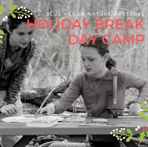 Holiday Break