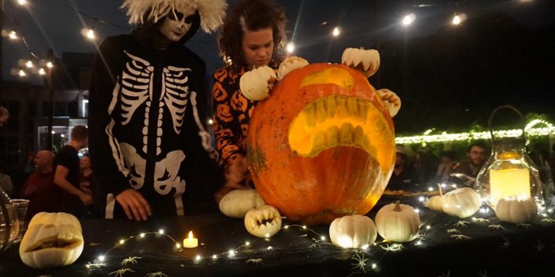 Botanical Garden Pumpkin Carving contest
